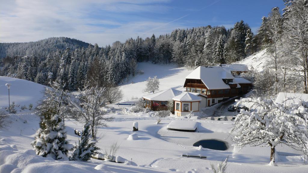 Vacances en for t noire hotel k ppelehof - Hotel en foret noire avec piscine ...