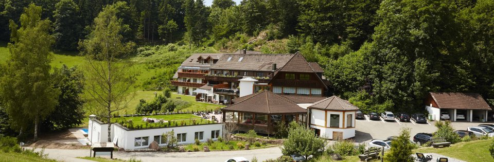 hotel in lauterbach im schwarzwald k ppelehof schwarzwald hotel. Black Bedroom Furniture Sets. Home Design Ideas
